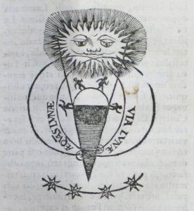 Graminaeus-p273